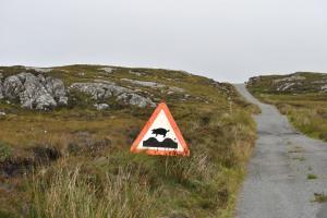wenn Schweine fliegen könnten - Calum's Road