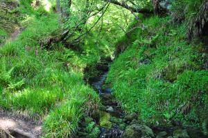Glenelg-Ardintoul-Totaig walk (10)