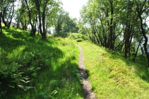Glenelg-Ardintoul-Totaig walk (15)