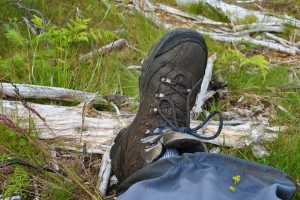 Glenelg-Ardintoul-Totaig walk (29)
