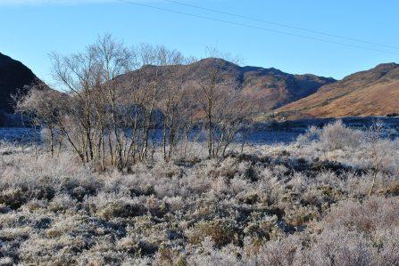 walk Loch Long (9)