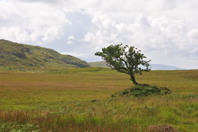 Dalavil, Isle of Skye