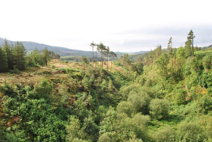 Galloway Mountains