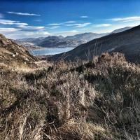 Das Monster vom Odal Pass