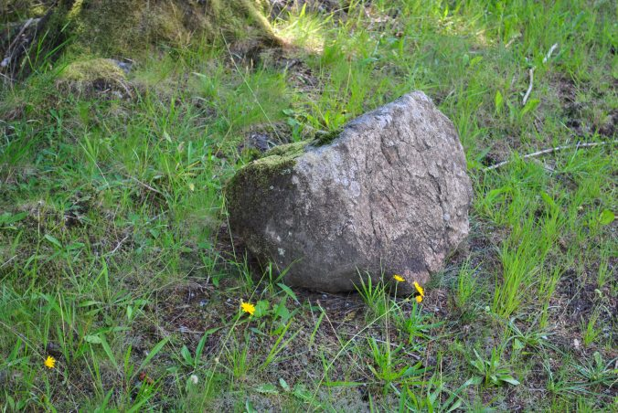 witche's stone Glenmoriston (6)