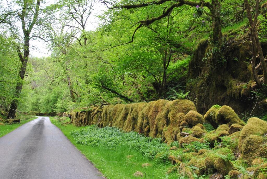 Mìle Dorcha ©nme Abenteuer Highlands Sind sie die Friedhofsfrau