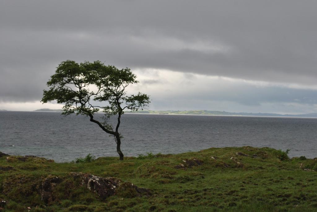 Morvern @nme Nellie Merthe Erkenbach Abenteuer Highlands